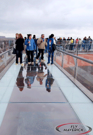Skywalk Tourists