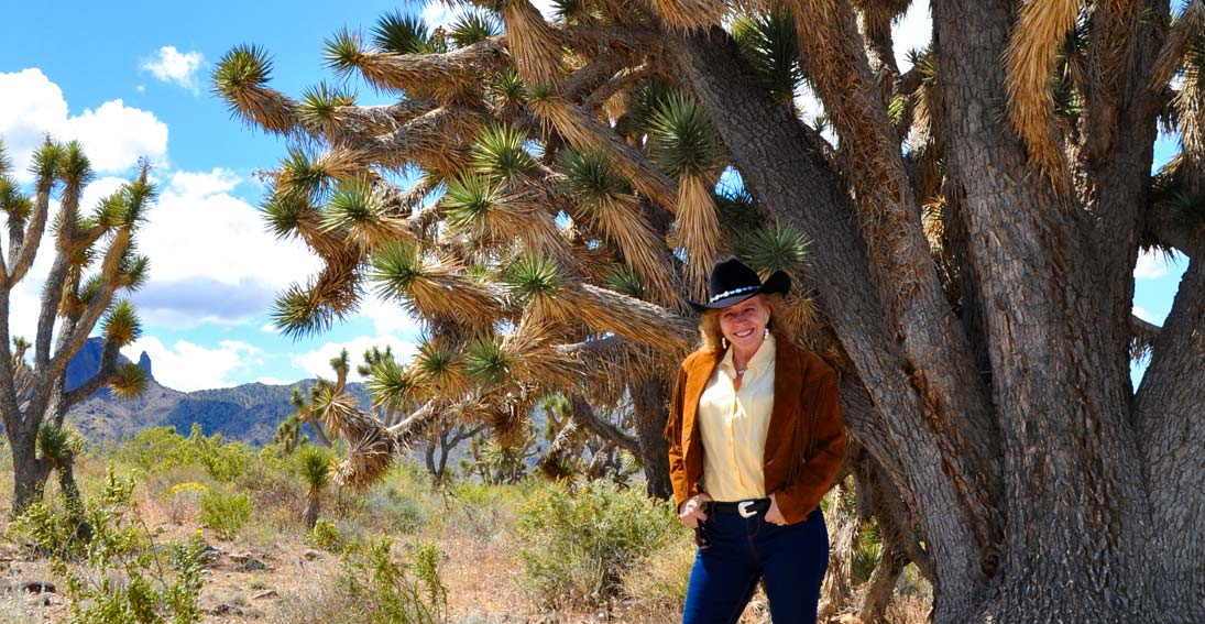 During your bus tour visit the incredible 900-year-old Joshua tree forest